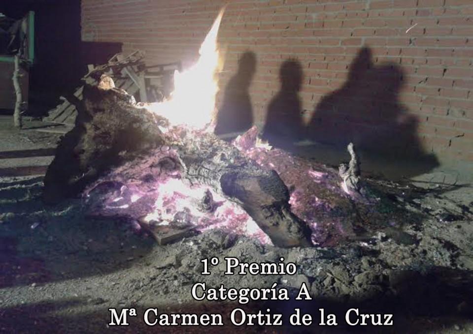 Noche de San Antón -de Mª Carmen Ortiz de la Cruz